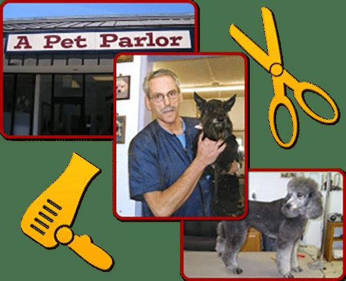 dog-groomer-lynwood